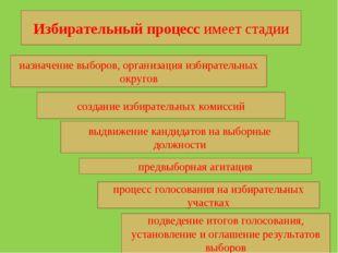 Избирательный процесс имеет стадии назначение выборов, организация избиратель