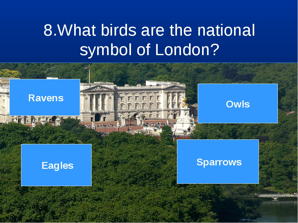 8.What birds are the national symbol of London? 7 8 9 3 4 5 6 2 1 Sparrows Ow...