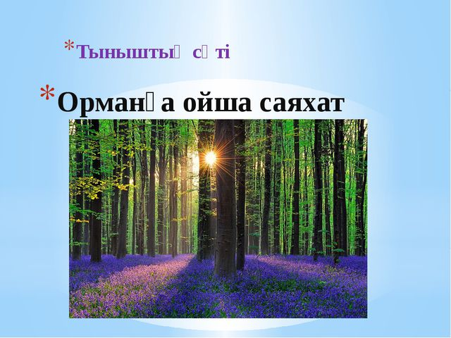 Орманға ойша саяхат Тыныштық сәті