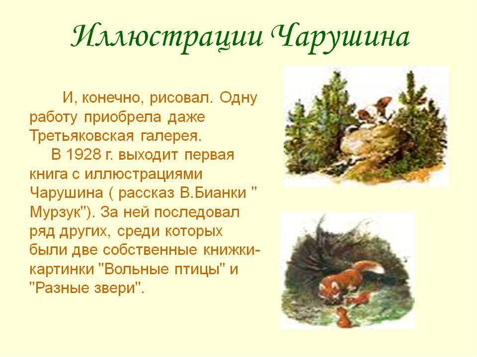 Презентация к уроку литературного чтения е и чарушин  страшный рассказ