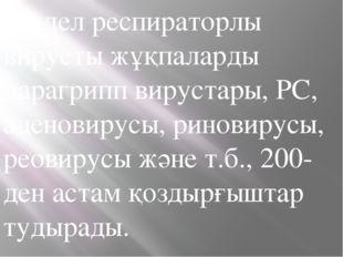 Жедел респираторлы вирусты жұқпаларды парагрипп вирустары, РС, аденовирусы, р