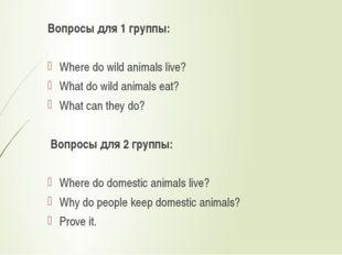 Вопросы для 1 группы:  Where do wild animals live? What do wild animals eat?