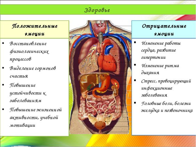 Здоровье Положительные эмоции Восстановление физиологических процессов Выделе...