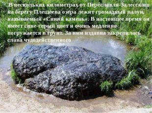 В нескольких километрах от Переславля-Залесского на берегу Плещеева озера ле
