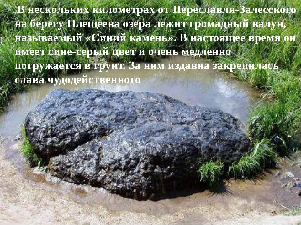 В нескольких километрах от Переславля-Залесского на берегу Плещеева озера ле...
