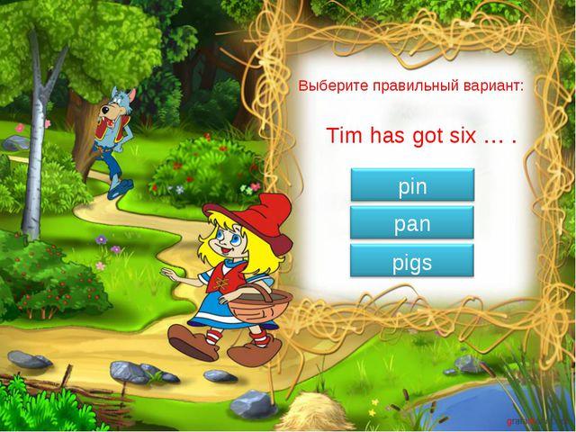 Выберите правильный вариант: Tim has got six … .