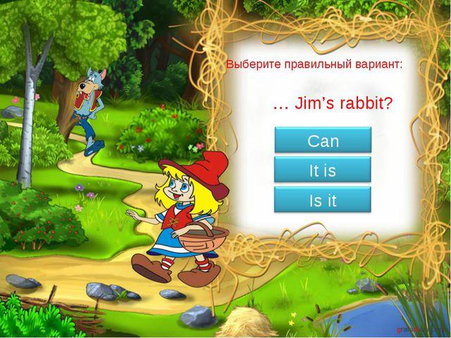 Выберите правильный вариант: … Jim's rabbit?