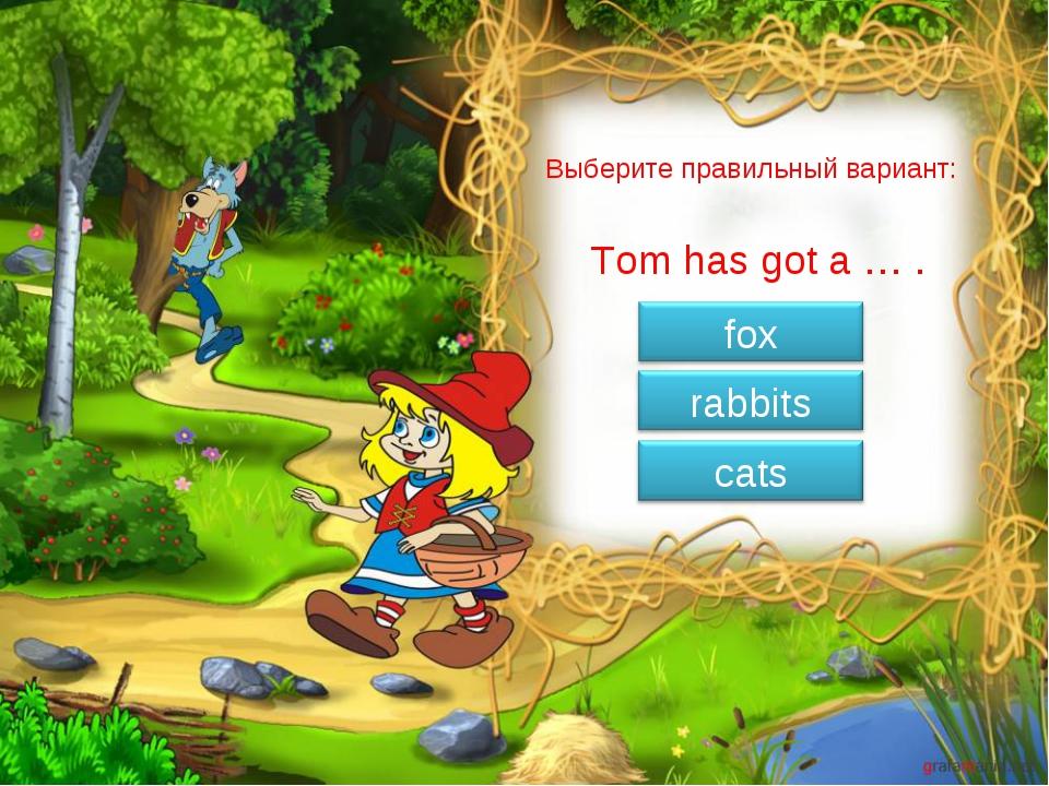 Выберите правильный вариант: Tom has got a … .