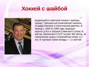 Хоккей с шайбой Владисла́в Алекса́ндрович Третья́к— выдающийся советскийхо