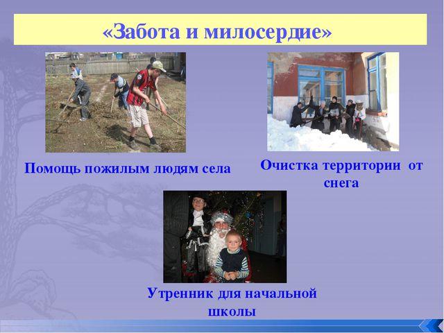 «Забота и милосердие» Помощь пожилым людям села Очистка территории от снега У...