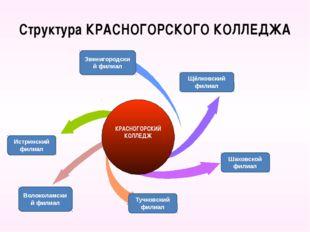 Структура КРАСНОГОРСКОГО КОЛЛЕДЖА Щёлковский филиал Шаховской филиал Звенигор