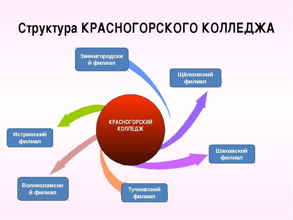 Структура КРАСНОГОРСКОГО КОЛЛЕДЖА Щёлковский филиал Шаховской филиал Звенигор...