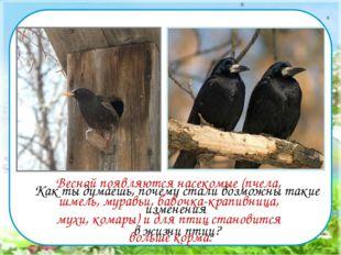 Как ты думаешь, почему стали возможны такие изменения в жизни птиц? Весной