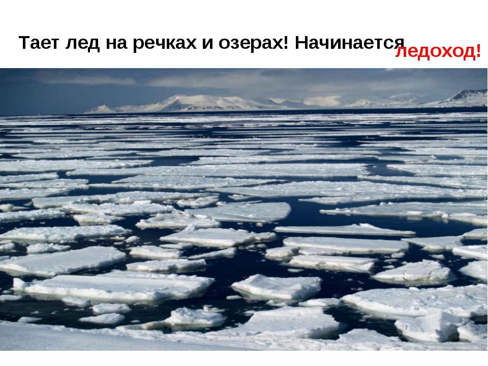 Тает лед на речках и озерах! Начинается ледоход!