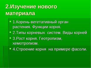 2.Изучение нового материала 1.Корень-вегетативный орган растения. Функции кор