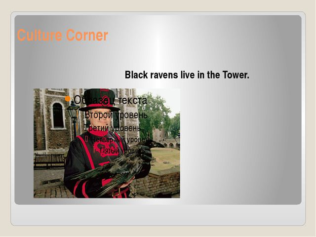 Culture Corner Black ravens live in the Tower.