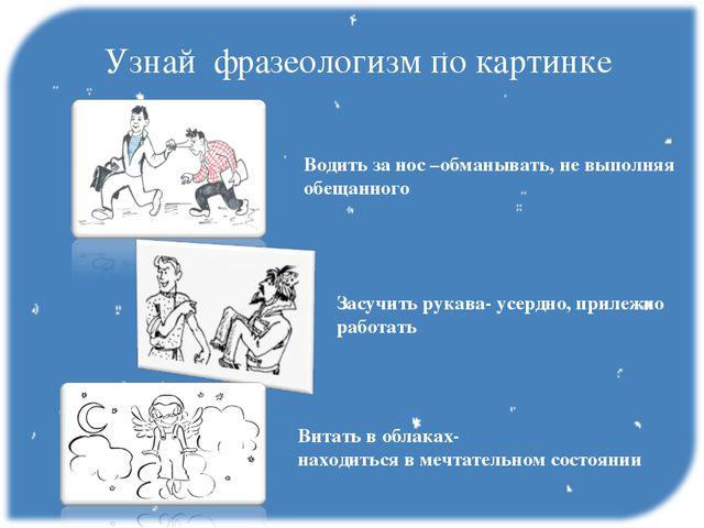 Фото фразеологизмов рисунки и их значение