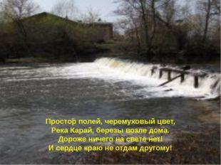 Простор полей, черемуховый цвет, Река Карай, березы возле дома. Дороже ничего