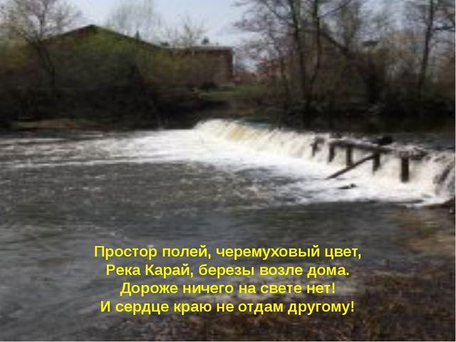 Простор полей, черемуховый цвет, Река Карай, березы возле дома. Дороже ничего...