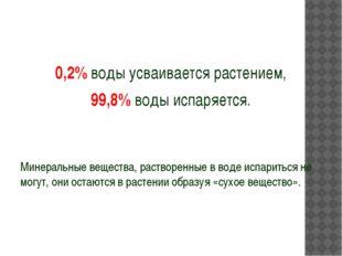 0,2% воды усваивается растением, 99,8% воды испаряется. Минеральные вещества