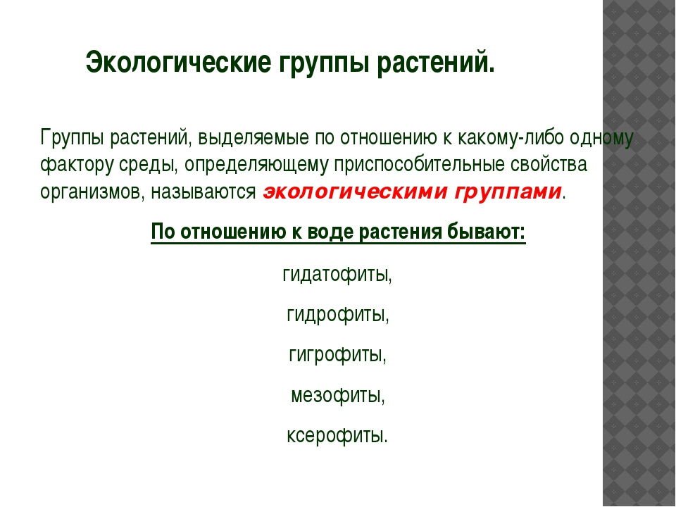 Экологические группы растений. Группы растений, выделяемые по отношению к ка...