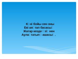 н 4- айналым « Жорға»