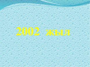 2002 жыл