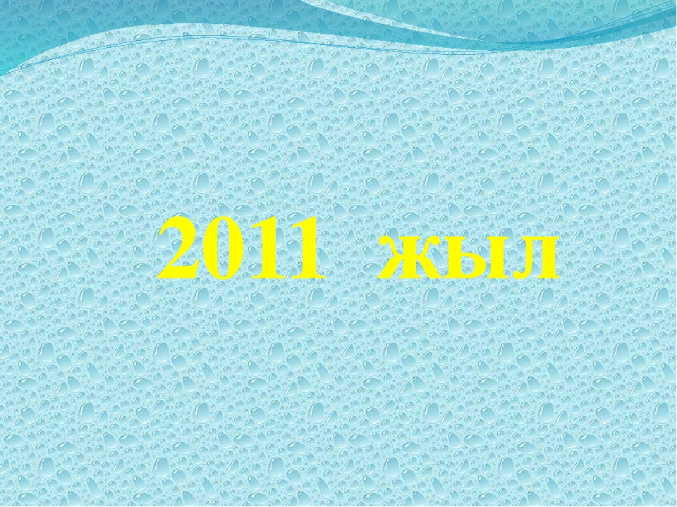 2011 жыл