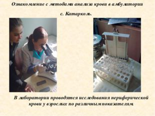 Ознакомление с методами анализа крови в амбулатории с. Катарколь. В лаборатор