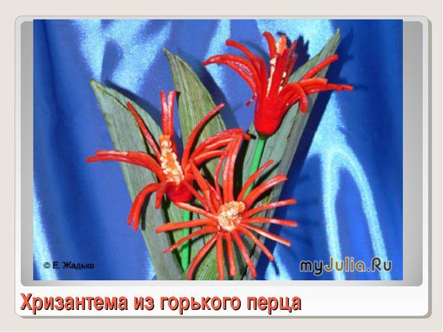 Хризантема из горького перца