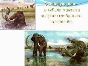 Основную роль в гибели мамонта сыграло глобальное потепление