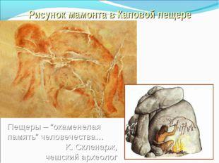 """Рисунок мамонта в Каповой пещере Пещеры – """"окаменелая память"""" человечества… К"""
