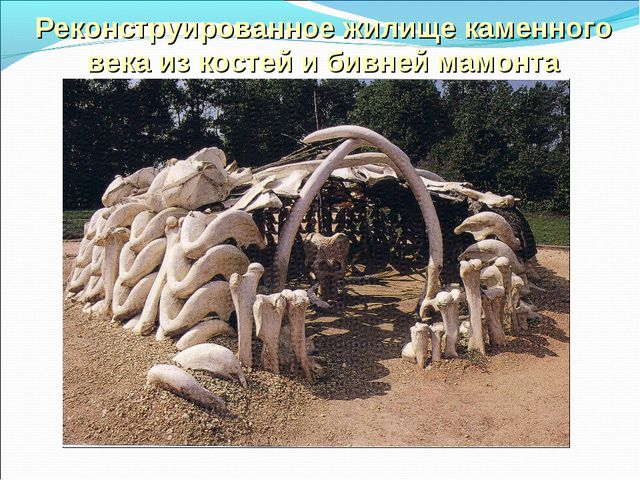 Реконструированное жилище каменного века из костей и бивней мамонта