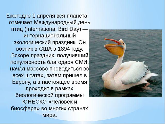 Ежегодно 1 апреля вся планета отмечает Международный день птиц (International...