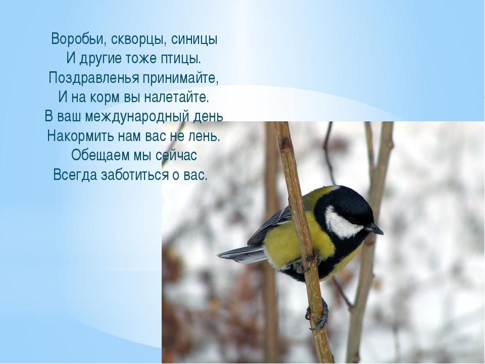 Воробьи, скворцы, синицы И другие тоже птицы. Поздравленья принимайте, И на к...