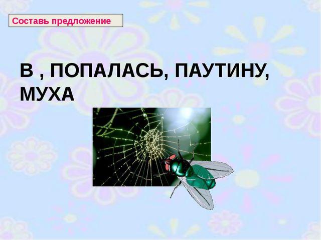 В , ПОПАЛАСЬ, ПАУТИНУ, МУХА Составь предложение