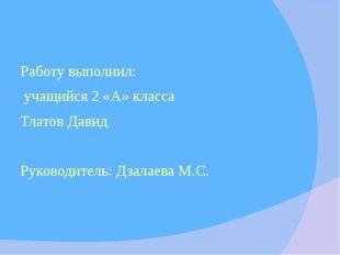 Работу выполнил: учащийся 2 «А» класса Тлатов Давид Руководитель: Дзалаева М