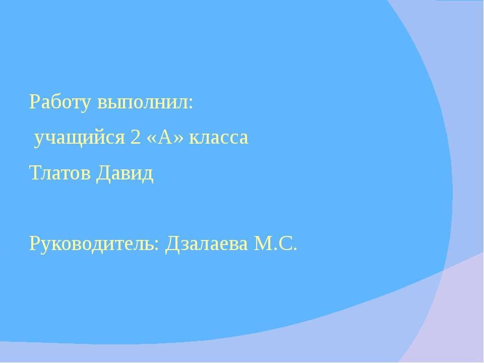 Работу выполнил: учащийся 2 «А» класса Тлатов Давид Руководитель: Дзалаева М...