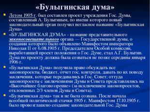 «Булыгинская дума» Летом 1905 г. был составлен проект учреждения Гос. Думы, с