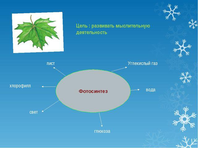 Фотосинтез лист глюкоза хлорофилл Углекислый газ вода свет Цель : развивать м...