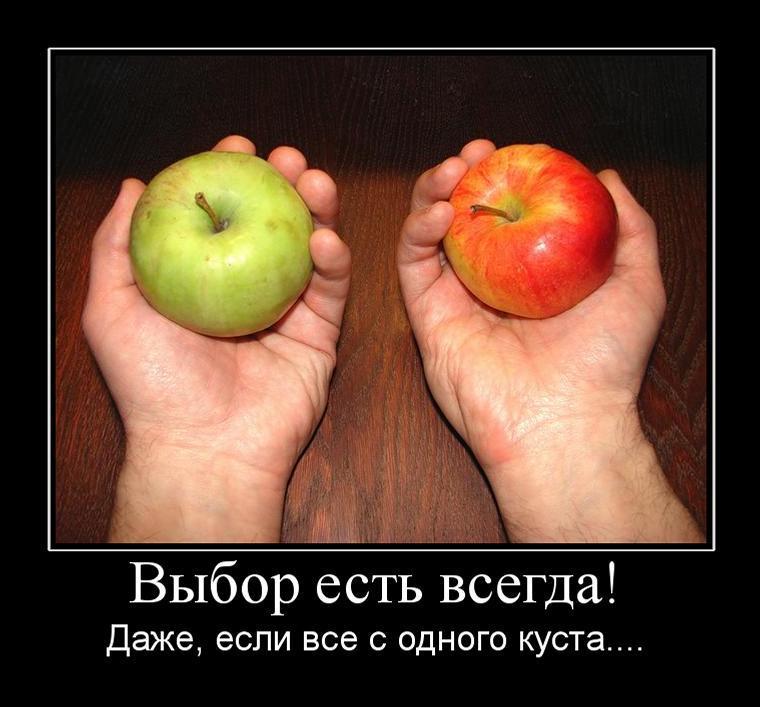 http://im7.asset.yvimg.kz/userimages/panterita/63Kvm8LLEfc9tGGaRSnq536mbX1679.jpg