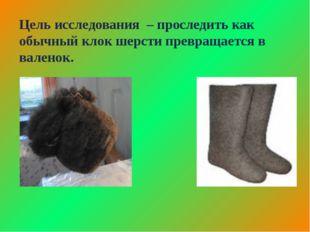 Цель исследования – проследить как обычный клок шерсти превращается в валенок.