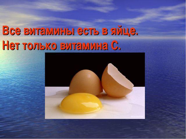 Все витамины есть в яйце. Нет только витамина С.