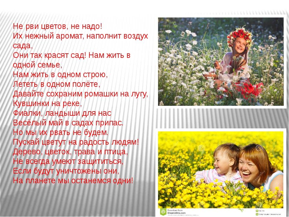Не рви цветов, не надо! Их нежный аромат, наполнит воздух сада, Они так крася...