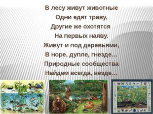 В лесу живут животные Одни едят траву, Другие же охотятся На первых наяву. Жи