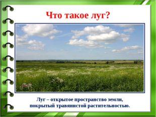 Что такое луг? Луг – открытое пространство земли, покрытый травянистой растит
