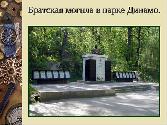 Братская могила в парке Динамо.