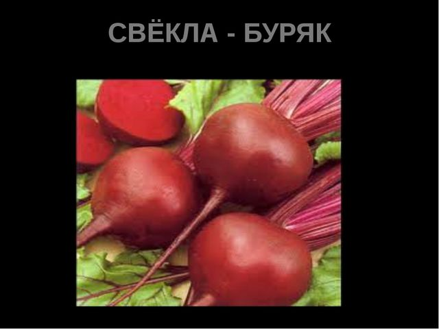 СВЁКЛА - БУРЯК