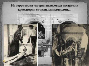 На территории лагеря гитлеровцы построили крематории с газовыми камерами…