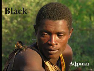 Black Африка